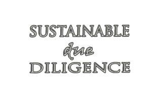 Sustainable Due Diligence